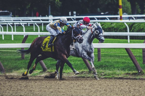 Horse Racing at Saratoga Race Course, photo by Noah Silliman